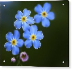 Blue By You Acrylic Print by Chris Hartman Price