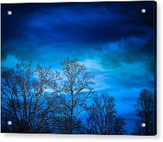 Blue Delight Acrylic Print by Victoria Ashley