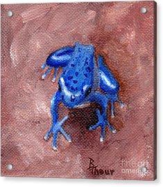 Blue Froggy Acrylic Print