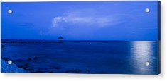 Blue Acrylic Print by Guillermo Luengas