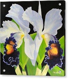 Blue Heaven Acrylic Print by Carol Reynolds