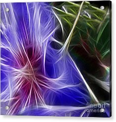 Blue Hibiscus Fractal Panel 1 Acrylic Print by Peter Piatt