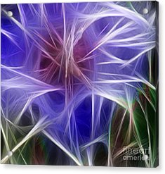 Blue Hibiscus Fractal Panel 5 Acrylic Print by Peter Piatt