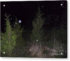 Blue In The Greenery Acrylic Print by Doug Kean