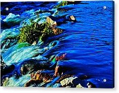 Blue Acrylic Print by Joshua Dwyer