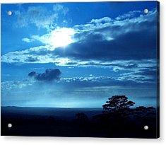 Blue Lights Acrylic Print by Nadi Leonard