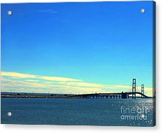 Acrylic Print featuring the photograph Blue Meets Blue by Lin Haring