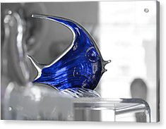 Blue Acrylic Print by Michael Braxenthaler