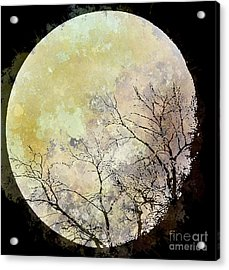 Blue Moon Rising Acrylic Print by Arne Hansen