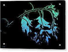 Blue On Black Acrylic Print