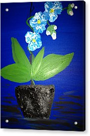 Blue Orchid 2 Acrylic Print by Pretchill Smith
