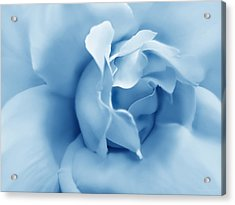 Blue Pastel Rose Flower Acrylic Print by Jennie Marie Schell