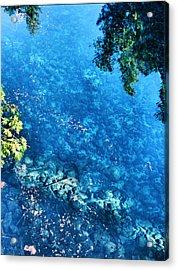 Blue Pool I Mckenzie River Oregon Acrylic Print