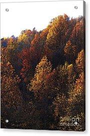 Blue Ridge 15 Acrylic Print by Steven Lebron Langston
