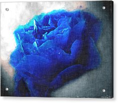 Acrylic Print featuring the digital art Blue Rose by Debbie Portwood