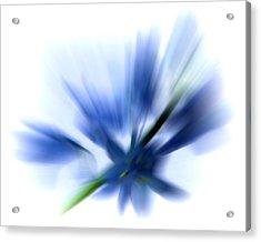 Blue Acrylic Print by Sharon Lisa Clarke