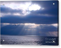 Acrylic Print featuring the photograph Blue Skies by Kim Pascu