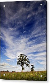 Acrylic Print featuring the photograph Blue Skies Smiling At Me  by John Chivers