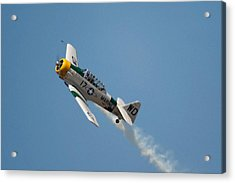 Acrylic Print featuring the photograph Blue Sky by Gary Rose