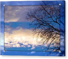 Acrylic Print featuring the photograph Blue Sky by Michelle Frizzell-Thompson