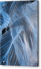 Acrylic Print featuring the photograph Blue Texture by Gillian Charters - Barnes