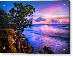 Blue Tide Acrylic Print by Debra and Dave Vanderlaan