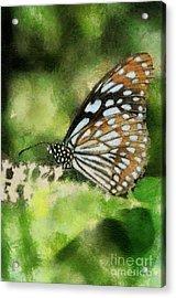 Blue Tiger Acrylic Print by Lois Bryan