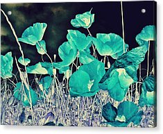 Blue Vision Acrylic Print by Marianna Mills