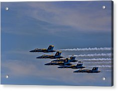 Acrylic Print featuring the photograph Blues by David Gleeson