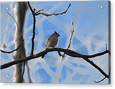 Acrylic Print featuring the photograph Blurred Branches by Brian Stevens