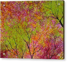 Blush 4 Acrylic Print