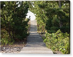 Boardwalk Footpath To The Beach. Acrylic Print by Schedivy Pictures Inc.