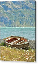 Boat And Wild Flowers By Sea Acrylic Print by M Moraes