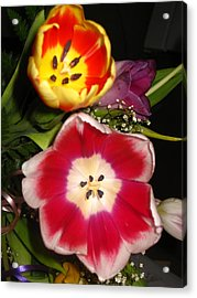 Bold Color Flowers Acrylic Print by Jose Lopez
