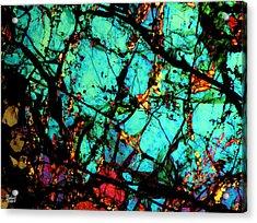 Bondac Meteorite Nwa 657 Acrylic Print