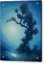 Bonsai I Acrylic Print by James Christopher Hill