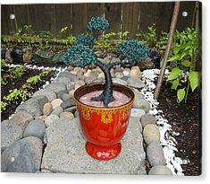 Bonsai Tree Medium Red Glass Vase Planter Acrylic Print by Scott Faucett