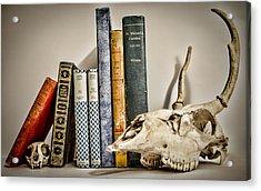 Books And Bones Acrylic Print by Heather Applegate