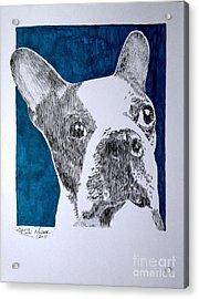Boston In Blue Acrylic Print by Robbi  Musser