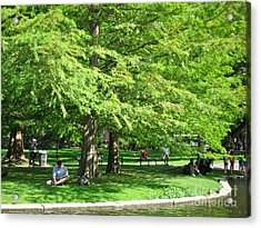 Acrylic Print featuring the photograph Boston Summer by Beth Saffer