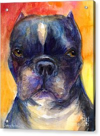 Boston Terrier Dog Portrait Painting In Watercolor Acrylic Print