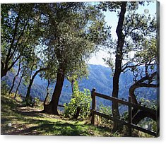 Bottchers Gap Acrylic Print by Christine Drake