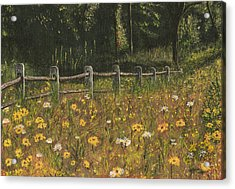 Acrylic Print featuring the painting boundary fence Swan Lake NY by Stuart B Yaeger