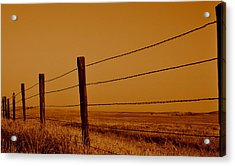 Acrylic Print featuring the photograph Boundary by Rima Biswas