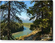 Bow River Acrylic Print by Bob and Nancy Kendrick