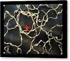 Box-es N.1028 - 2010 - Acrylic Print by Tinamaria Marongiu