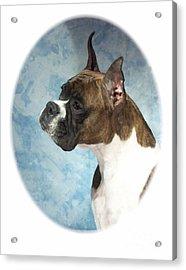 Boxer 816 Acrylic Print by Larry Matthews