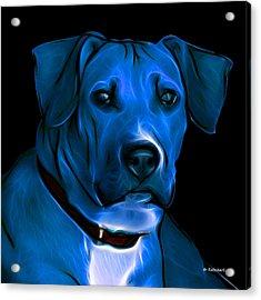 Boxer Pitbull Mix Pop Art-blue Acrylic Print by James Ahn