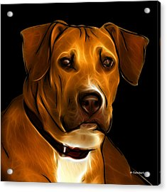 Boxer Pitbull Mix Pop Art - Orange Acrylic Print by James Ahn