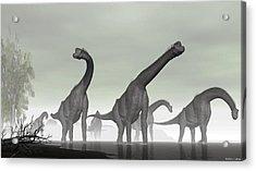 Acrylic Print featuring the digital art Brachiosaurus by Walter Colvin